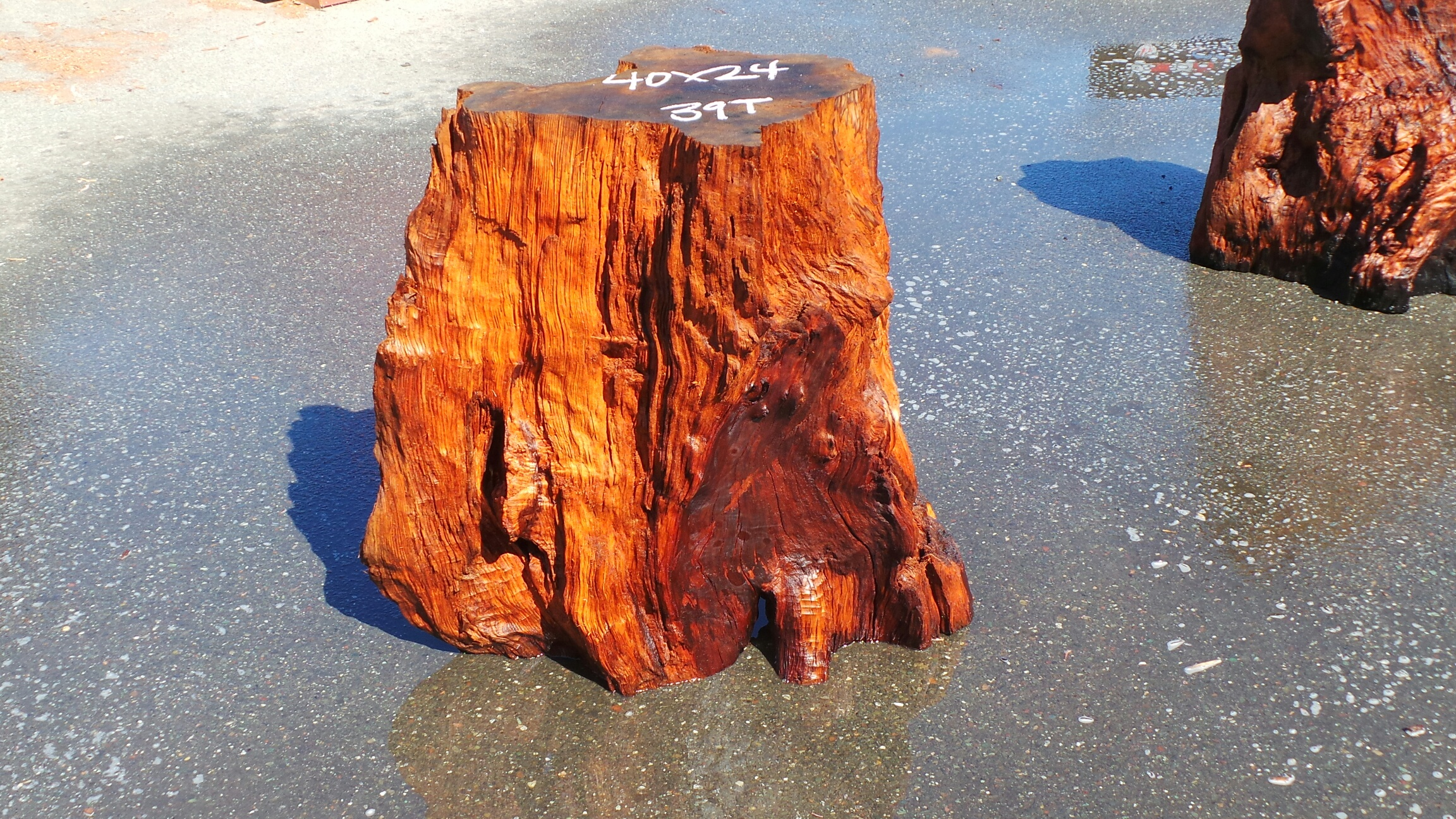 Redwood Tree Root Dining Table Base