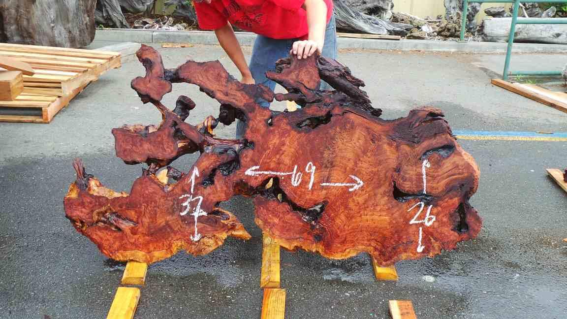 Burl wood art slab - highly figured redwood