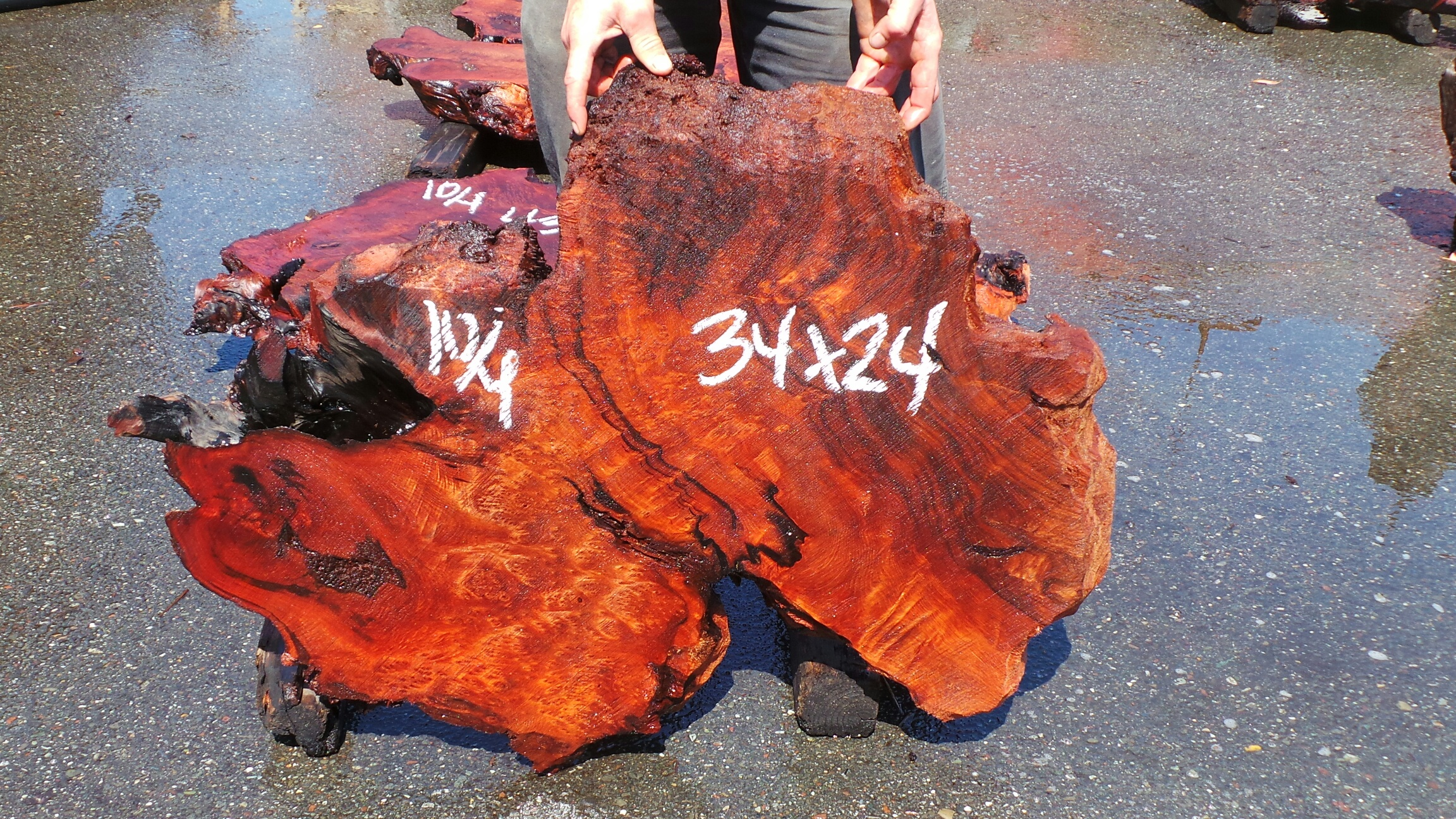 Redwood Burl Slab - Burl Redwood Coffee Table