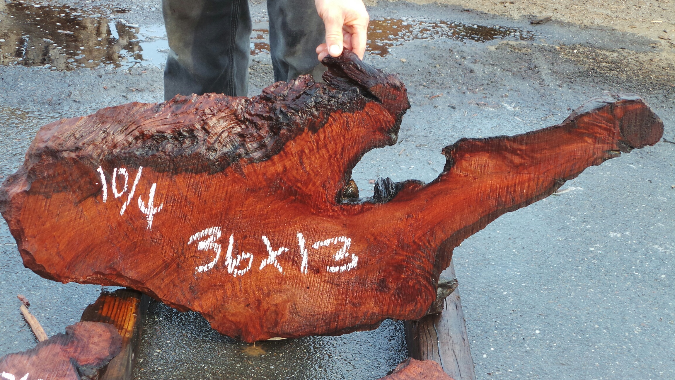 Curly Redwood Supply