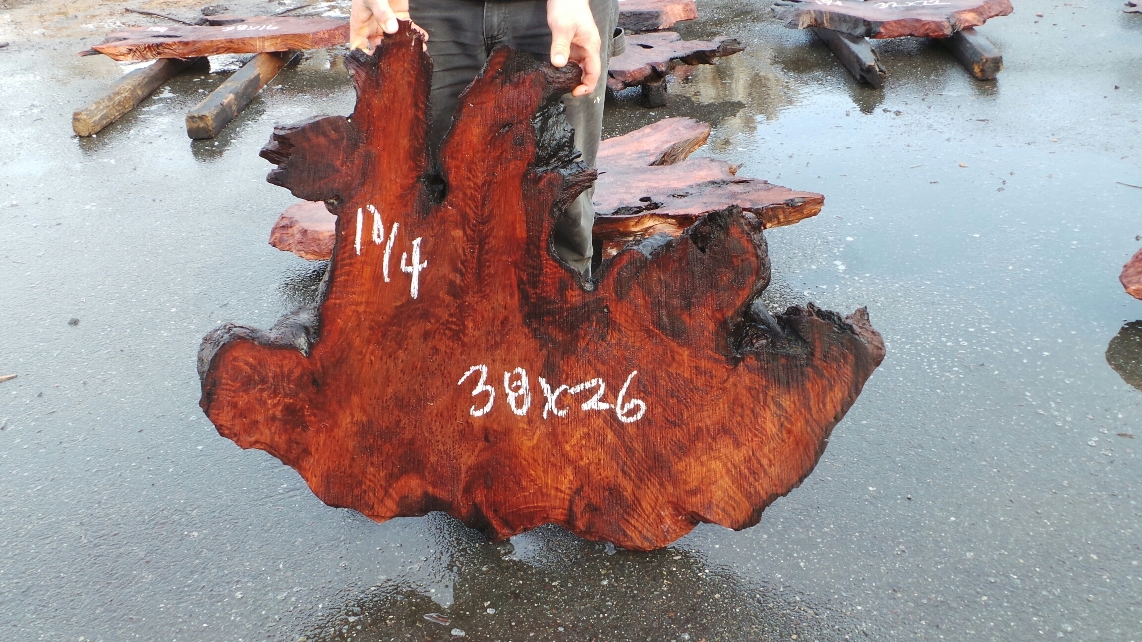 Burl Wood Natural Tabletop