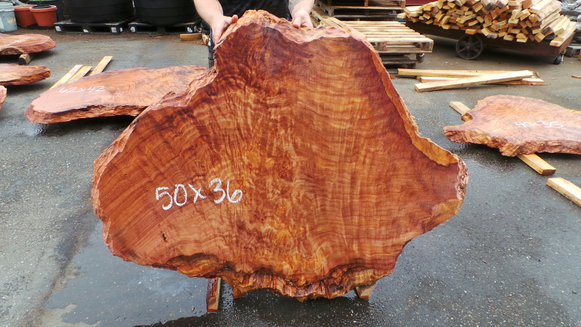 Curly old second growth slab