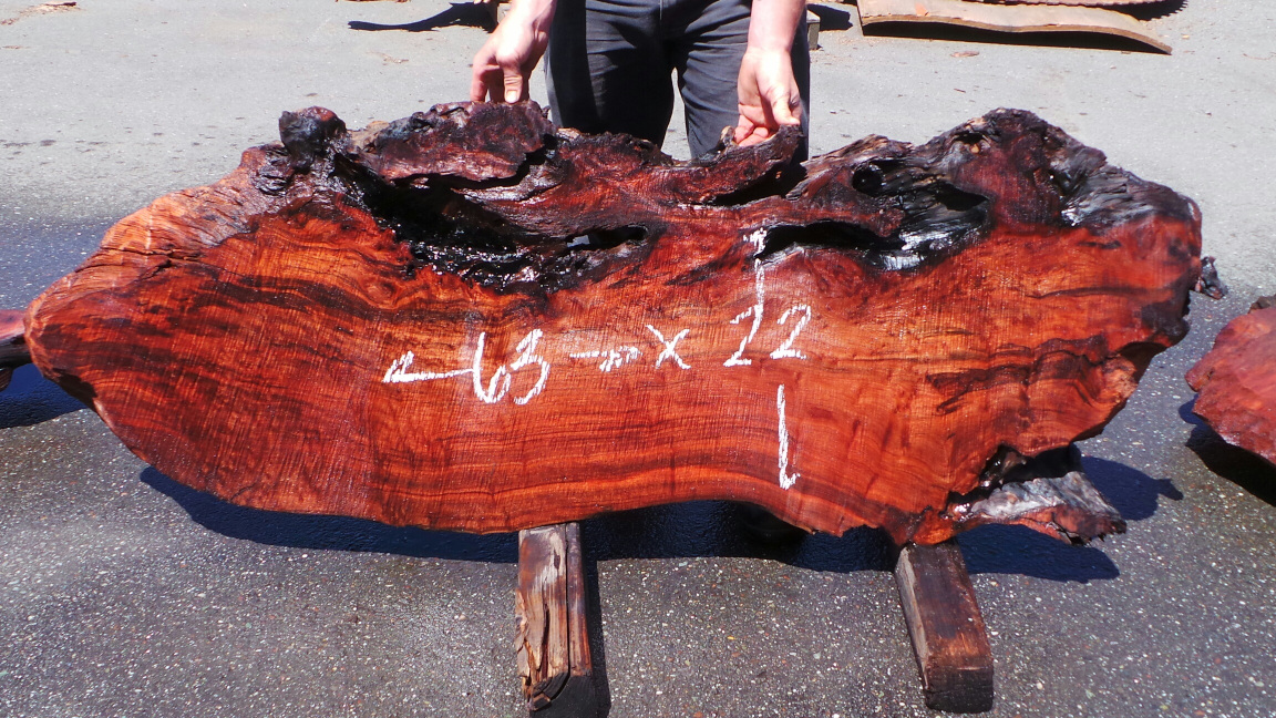 Redwood Burl Accent Table Slab