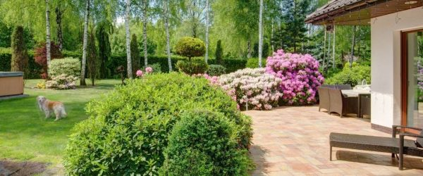 7 hardscaping tips dog owners