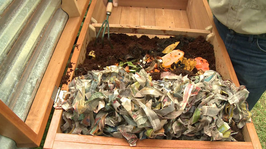 Basic Steps To Making Your Own Red Worms Composter