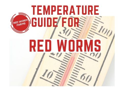 Temperature Guide for Red Worms - redwormfarms.com