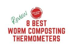8 Best Worm Composting Thermometers (Review)