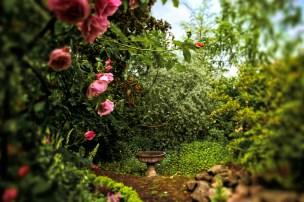 Enchanted Garden, Portland