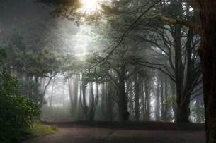Sunrise at Golden Gate Heights Park