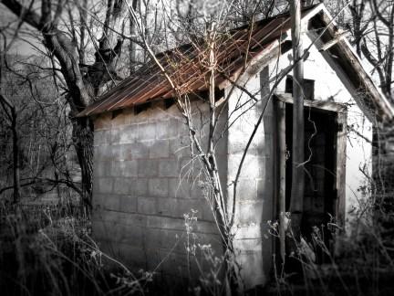 Rusty Shack Roof, VA