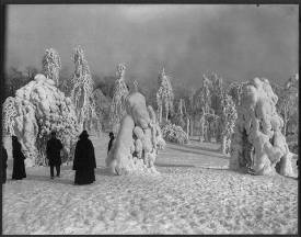 Propect Park in Brooklyn, New York in Winter circa 1904 (source: http://1.usa.gov/1dR7r1b)
