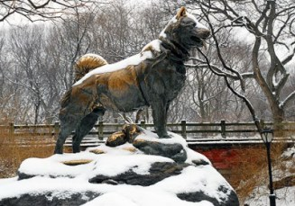 The Statue of Balto in Central Park, New York City. (credit: http://www.centralparknyc.org/visit/things-to-see/south-end/balto.html)