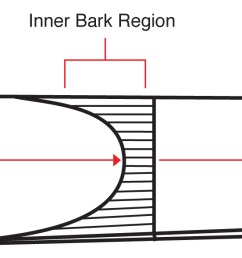 vamp length ranges [ 1915 x 589 Pixel ]