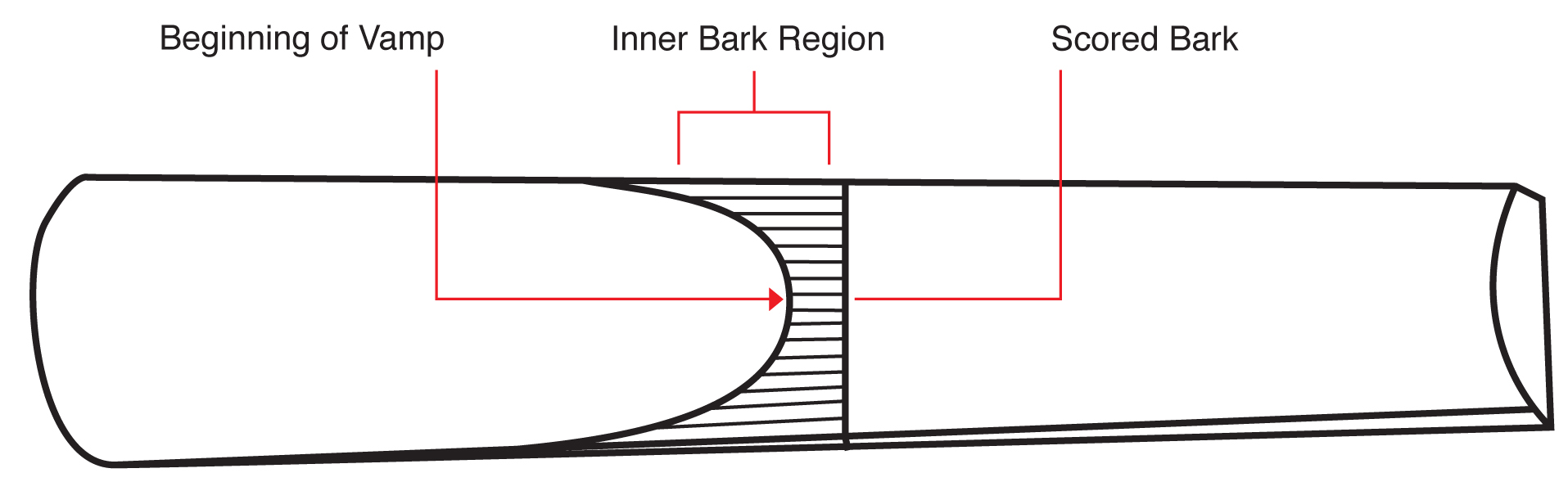 hight resolution of vamp length ranges