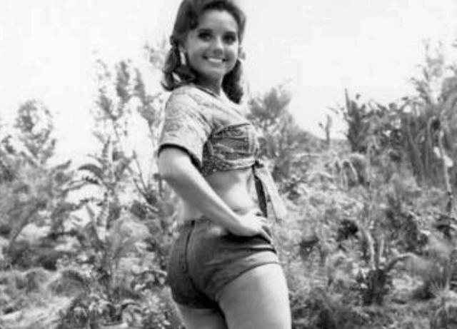 """Gilligan's Island Dawn  """"Mary Ann"""" Wells dies at 82"""