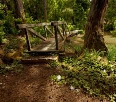 """""""Green Woods"""" Credit: Major4z (Blenderartists.org)"""