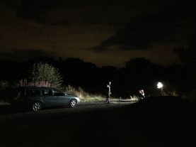 2kw Blonde for backlight - Cosmos Night Exterior Field