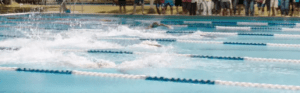 barracuda tv series swimming