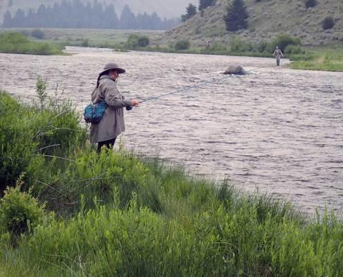 Reel Women Fly Fishing Adventures Madison River Montana Angler