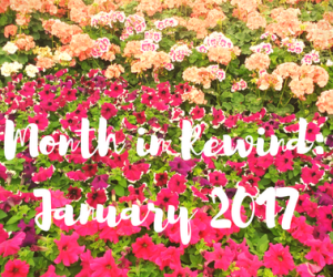 Month in rewind : January 2017