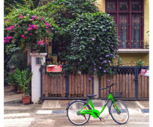 #MondayMusings : Rediscovering the joy of cycling