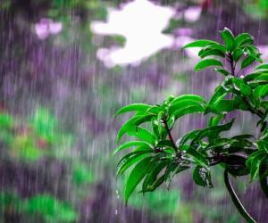 When it rains #WordsMatter