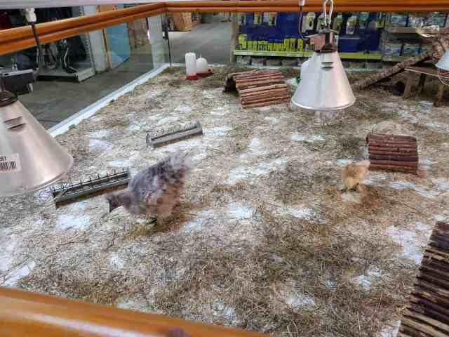 Zoo Zajac größte Zoohandlung der Welt
