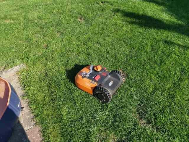 Rasenroboter bei Hitze
