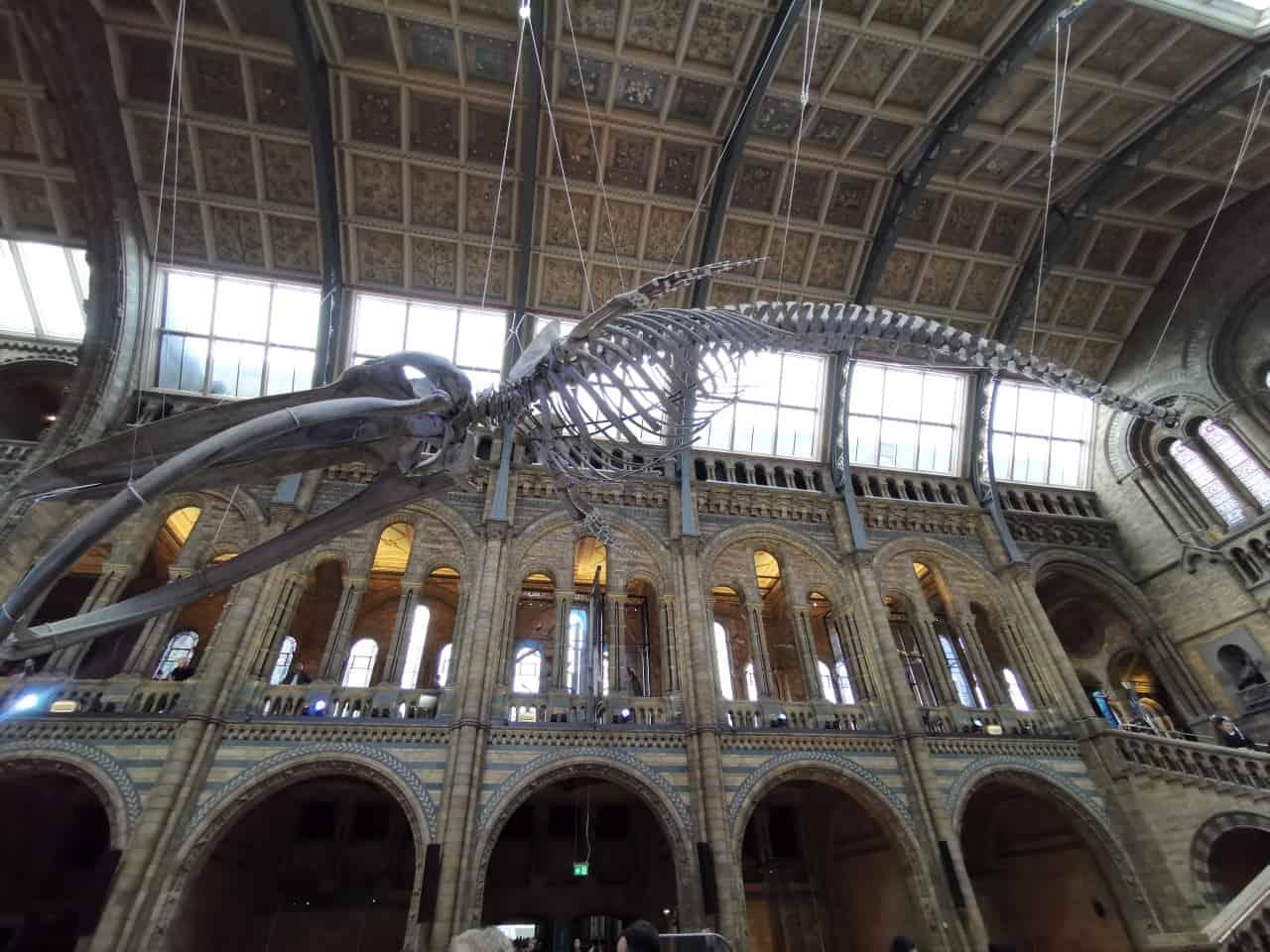 Dinosaurier London