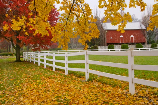 Fall Foliage Wallpaper Widescreen Farm Donald Reese Photography