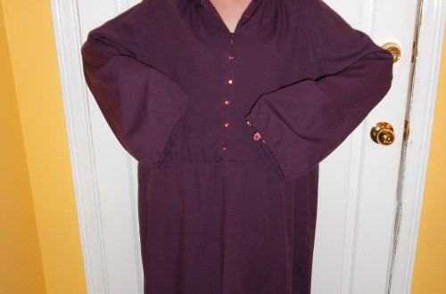 Day 205:  Grape Jelly Dress 16