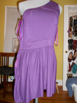 Day 219:  Life of the Party Dress 5