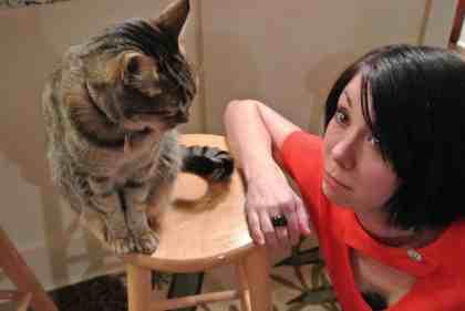 Awkward Cat Moment.
