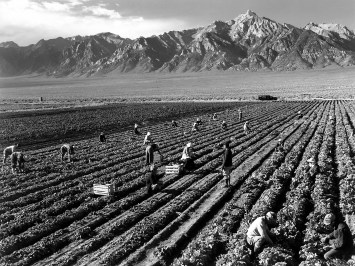Farm workers and Mt. Williamson, 1942.