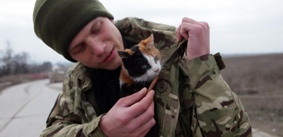 Un soldat ukrainien et une chatte à un checkpoint près de Sartana, dans l'est de l'Ukraine, le 29 février 2016. ©ALEKSEY FILIPPOV / AFP