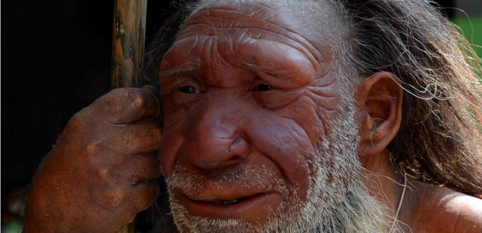 L'homme de Néandertal découpait ses congénères comme du gibier. AFP/HORST OSSINGER / DPA