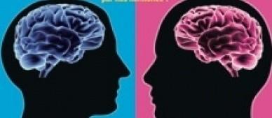 Cerveau bleu vs. cerveau rose
