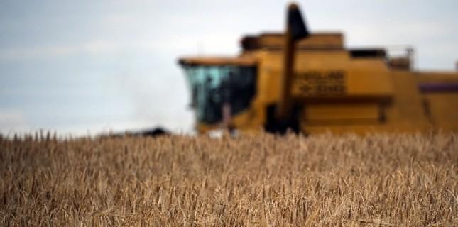 FRANCE, Godewaersvelde : A farmer harvests wheat with a reaper on July 25, 2011 in Godewaersvelde, northern France. © AFP PHOTO PHILIPPE HUGUEN