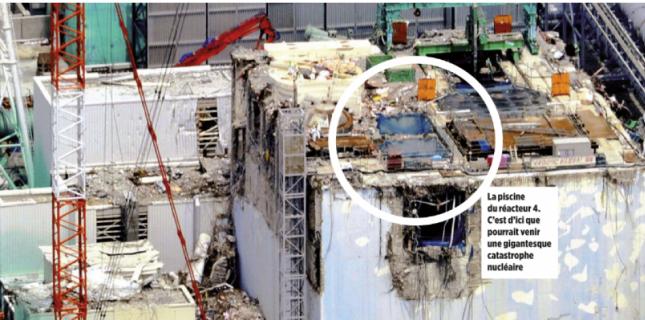 ENQUETE. Fukushima