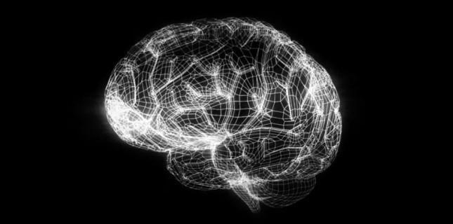 Le cerveau virtuel de l'EPFL bénéficiera d'une aide européenne sur dix ans. BBP/EPFL