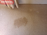 coffee stain on rug