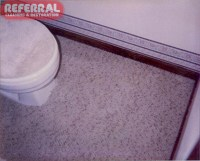 Dog Urine Stain Out Of Carpet - Cfcpoland
