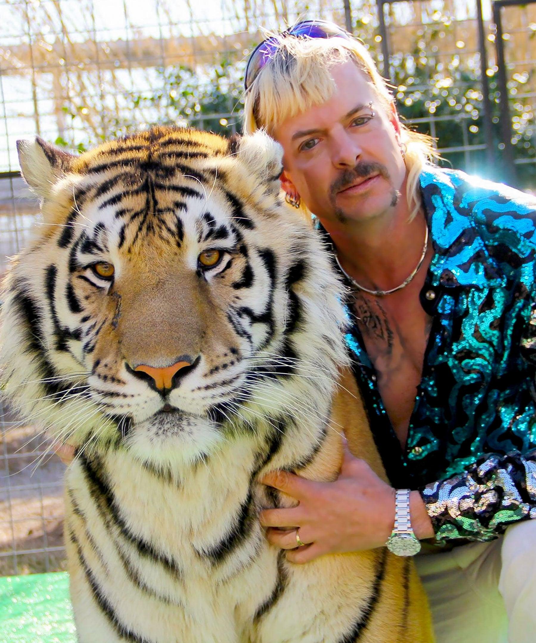 Hold A Tiger : tiger, Story, Exotic, Netflix, Tiger