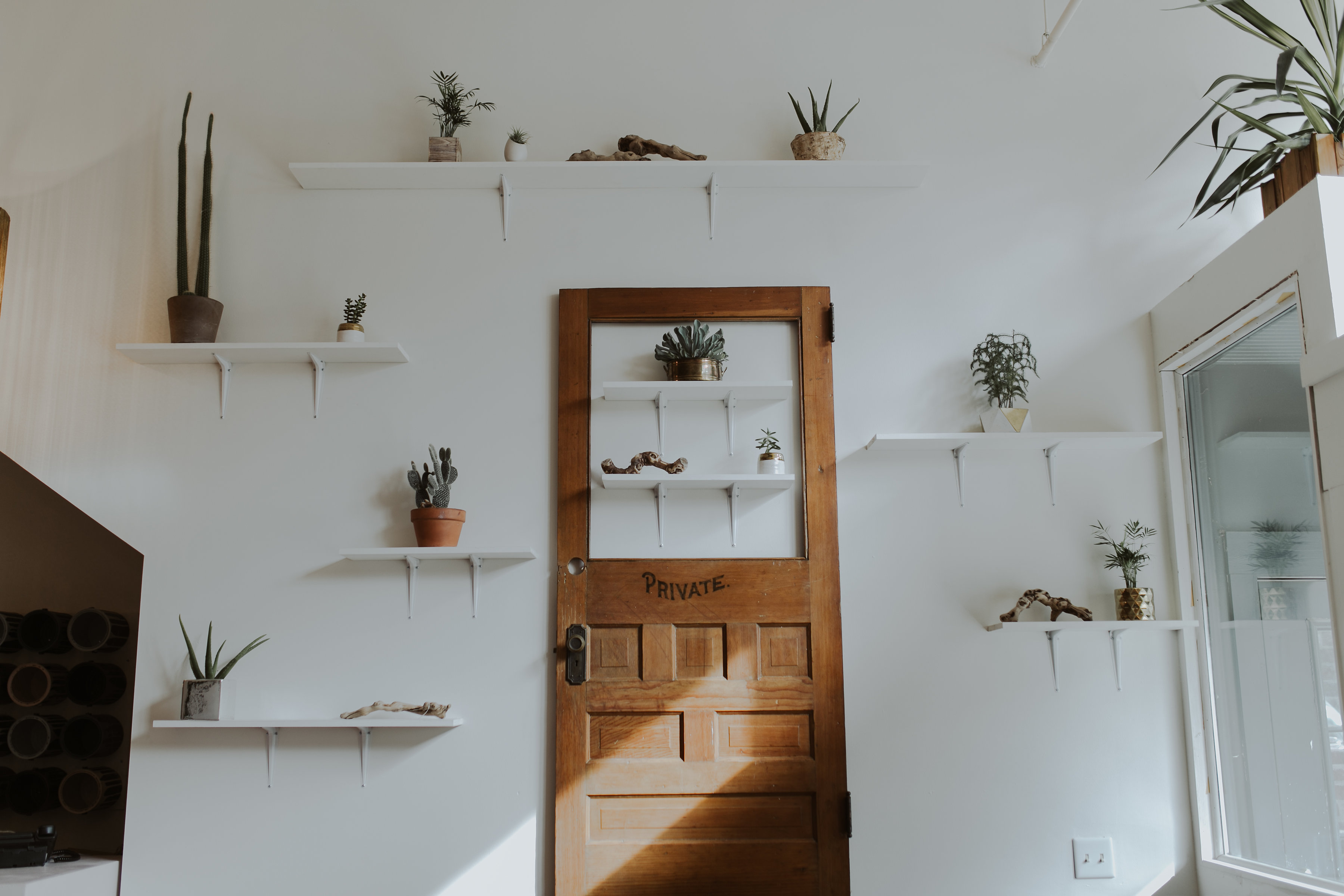 Wooden door decor hanging on wall surrounded by succulents