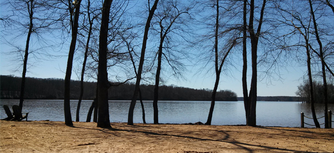 Reflection Pointe Beach Area