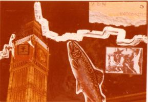 ZEN for a fish - Big Ben