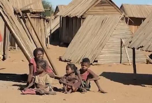 Sand Eaters of Madagascar – Ishita Gupta