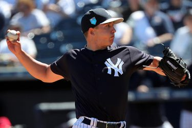 Chad Green, New York Yankees N.Y. Post: Charles Wenzelberg