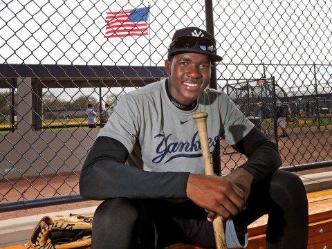 Estevan Florial, Yankees Prospect (l'union Suite)