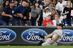 Yankees Brett Gardner Still The Glue (NY Daily News)